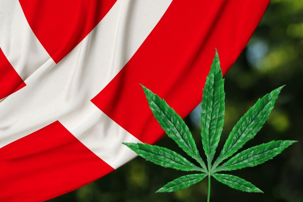 Buy weed online Denmark, weed for sale Denmark, order marijuana online Copenhagen, buy cannabis online Denmark, buy weed in Aarhus