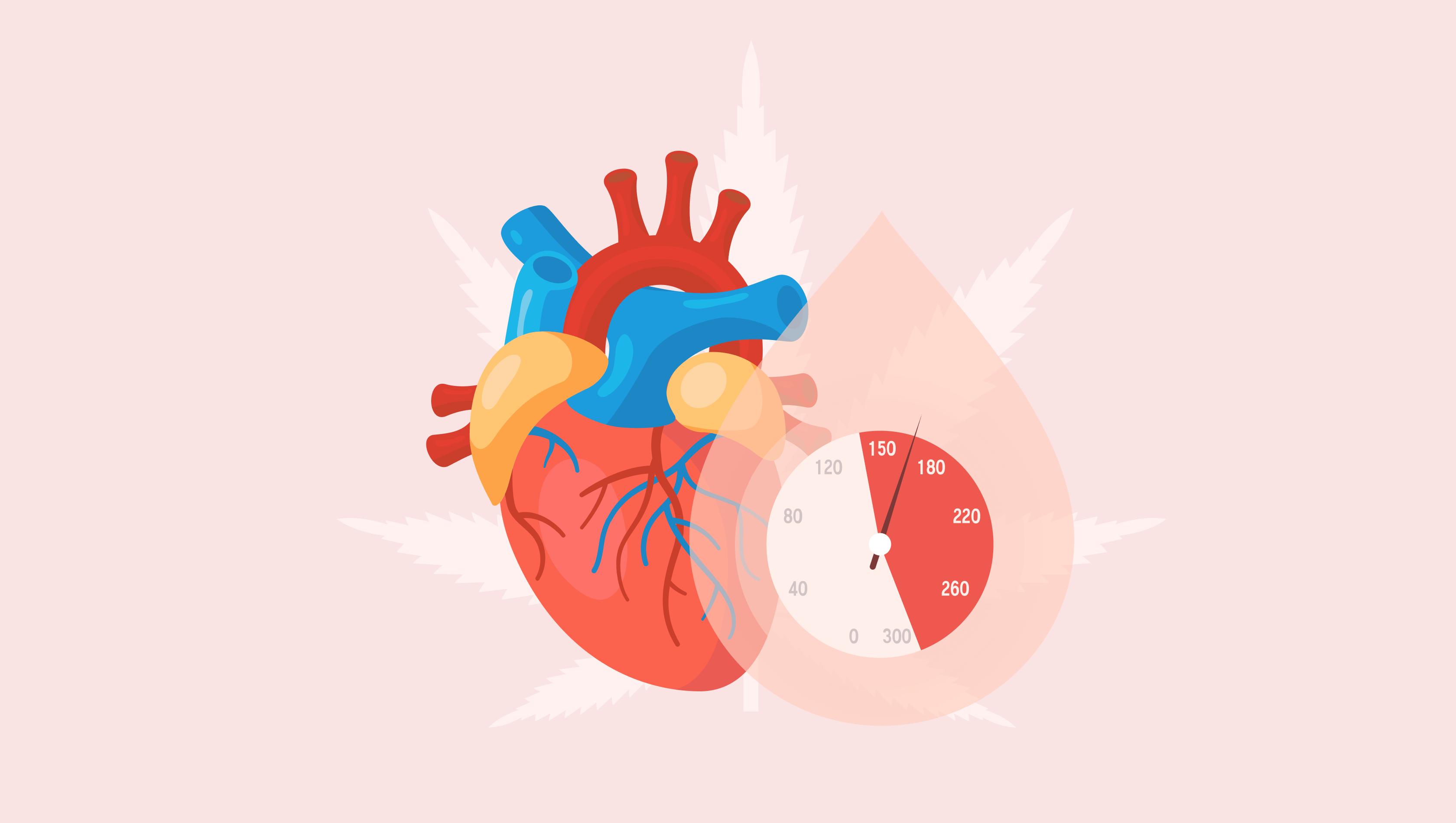 Dieta de hipertensión para inflamación endotelial
