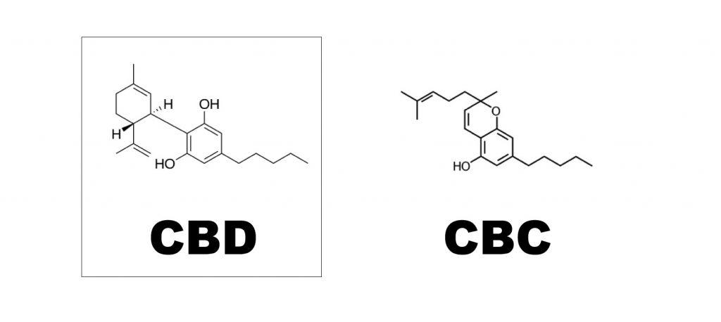 cbd-vs-cbc
