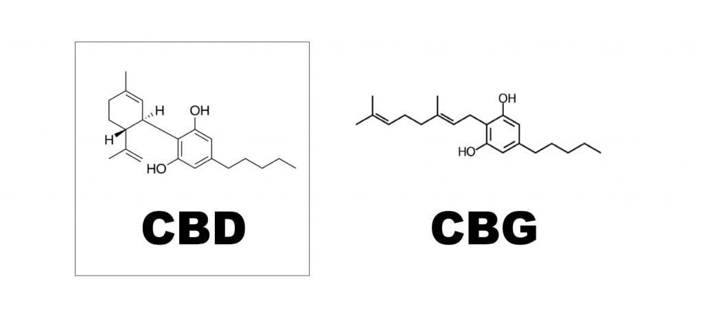 cbd-vs-cbg