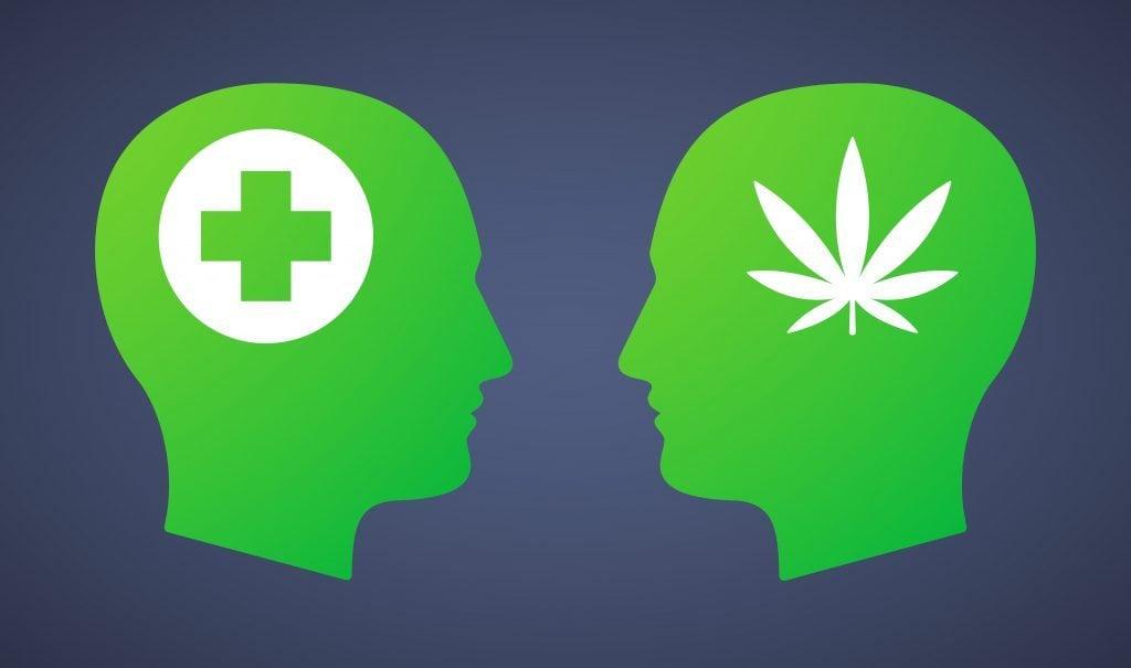 canapa vs. marijuana