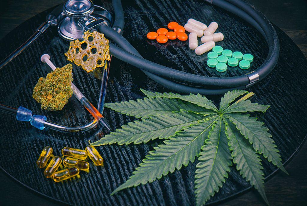 canapa vs. marijuana 2